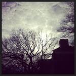 winter sky nyc smn