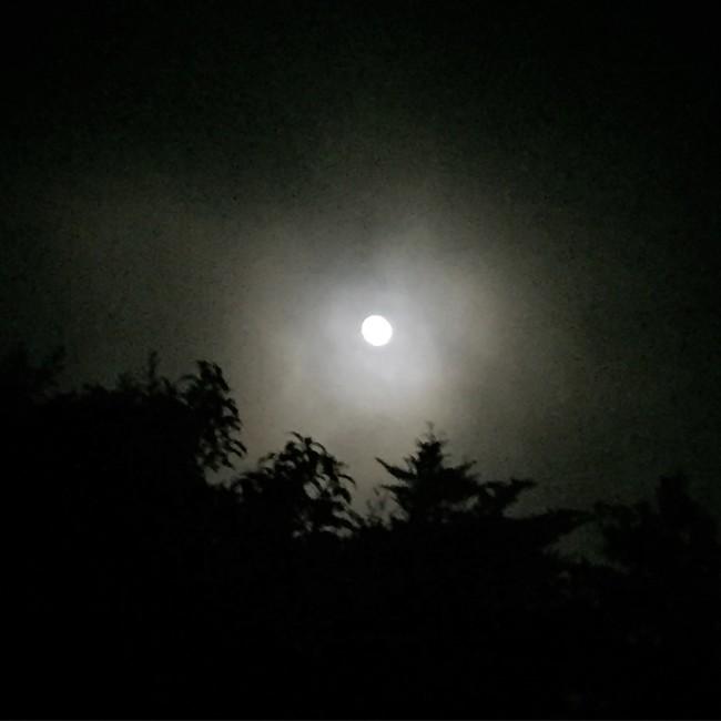 August 2015 Full Moon on Maui by Sara Tekula