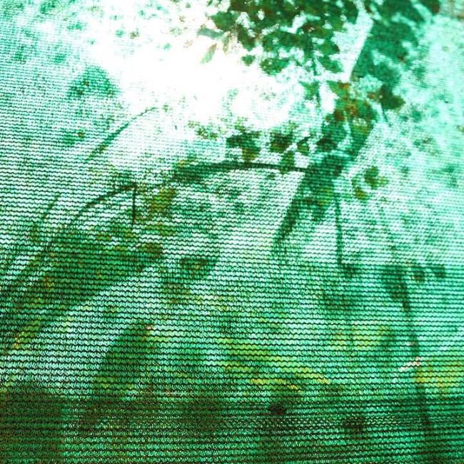 Merwin Greenhouse by Gwen Arkin