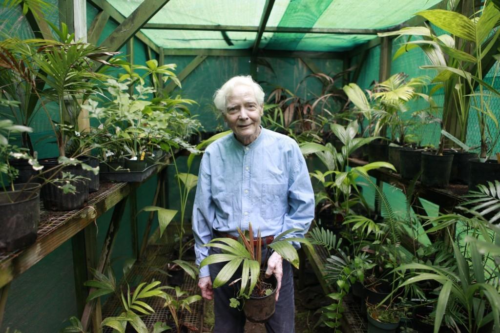 In the Greenhouse by Len Jenshel